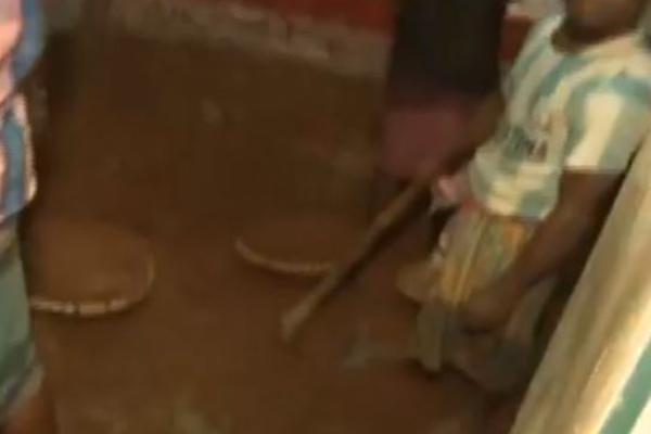 মিরপুরে গুপ্তধনের সন্ধানে চলছে খোঁড়াখুড়ি
