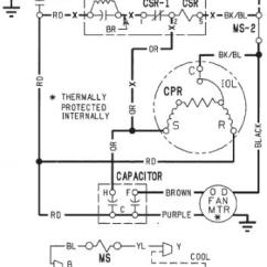 Trane Voyager Thermostat Wiring Diagram Label The Following Of Respiratory System 7 5 | Get Free Image About