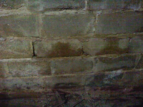 80 Year Old Cinderblock Basement Exposed to Resolve Water