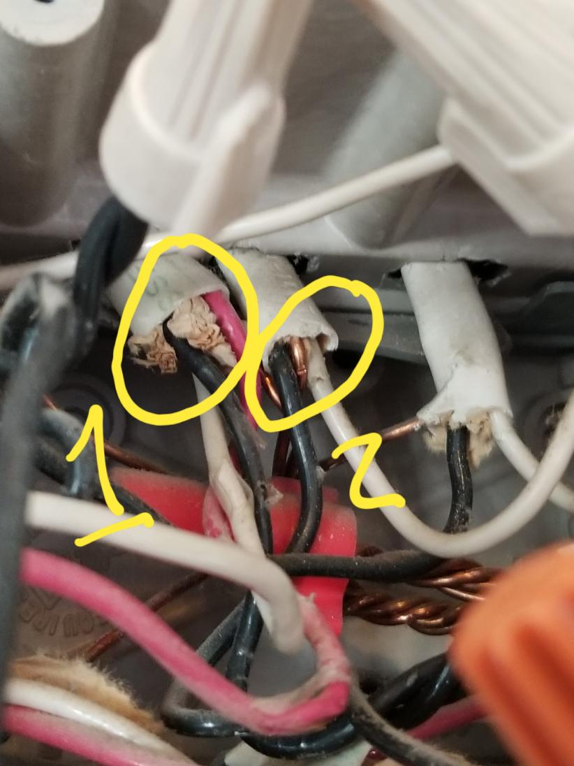 hight resolution of 87401d1511136628 wiring question smart light switch 20171119 180533 jpg