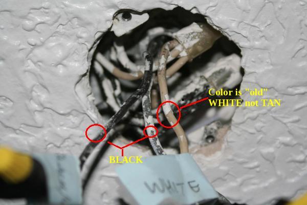 Wiring Black White Hot