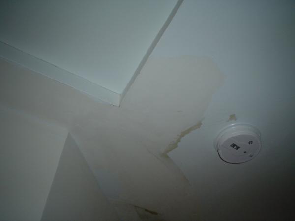 Cracking/peeling ceiling paint