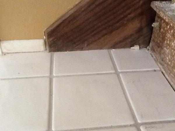 Is this mold behind baseboard  DoItYourselfcom