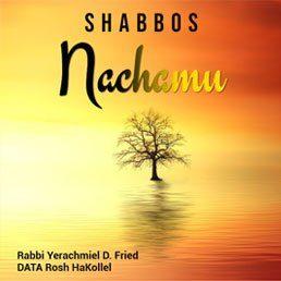 Ask the Rabbi: Shabbos Nachamu – The Beginning of Our Paradigm Shift. By Rabbi Yerachmiel D. Fried