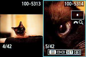 Canon 5D Mark III Mk 3 comparative playback side by side image review