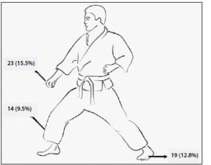 martial arts diagram 1970 ford f100 alternator wiring how to prevent injuries in dojo mart contrast grappling such as juijitsu the majority of were sustained shoulder knee and ear again this is illustrated