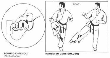 Resultado de imagen de sokuto geri
