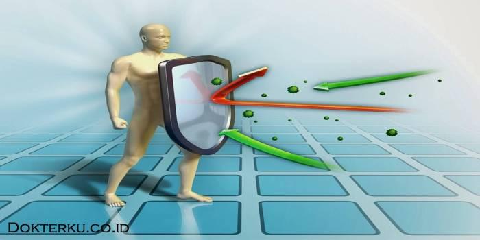Tingkatkan daya tahan tubuh Anda dengan berolahraga secara teratur via tokoherbalacemaxs.com