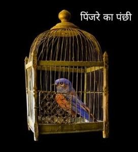 पिंजरे का पंछी हिंदी कविता Heart touching Hindi Poem