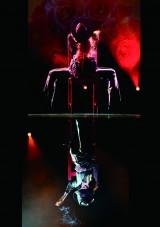 安寿ミラダンスコラボレーション FEMALE.Vol.12~35th. Anniversary~
