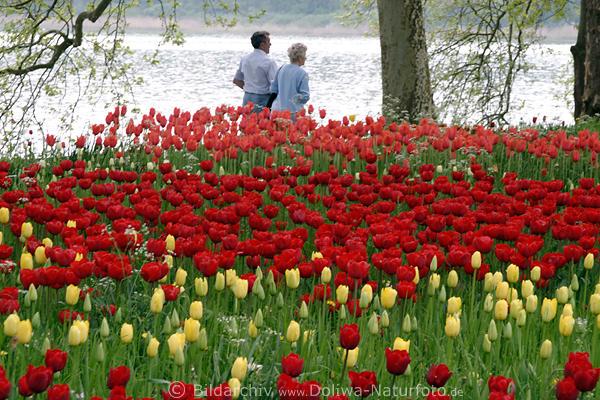 Spaziergnger Paar hinter farbigen Bltenwellen Foto am