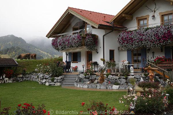 Schner Hausgarten Bilder Blumenladen fr Pflanzzeit