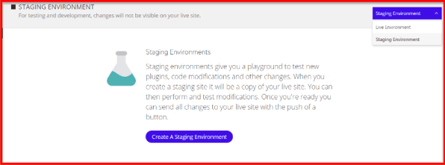 WordPress staging site for testing