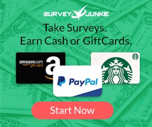 take paid surveys to earn extra money