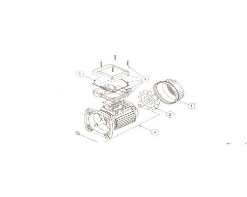 Pentair Pump Motor Parts