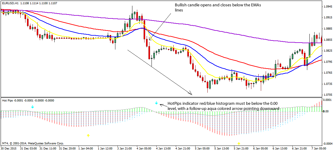 Forex pip exit