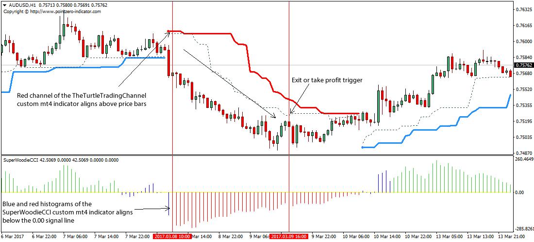 Forex tt rate