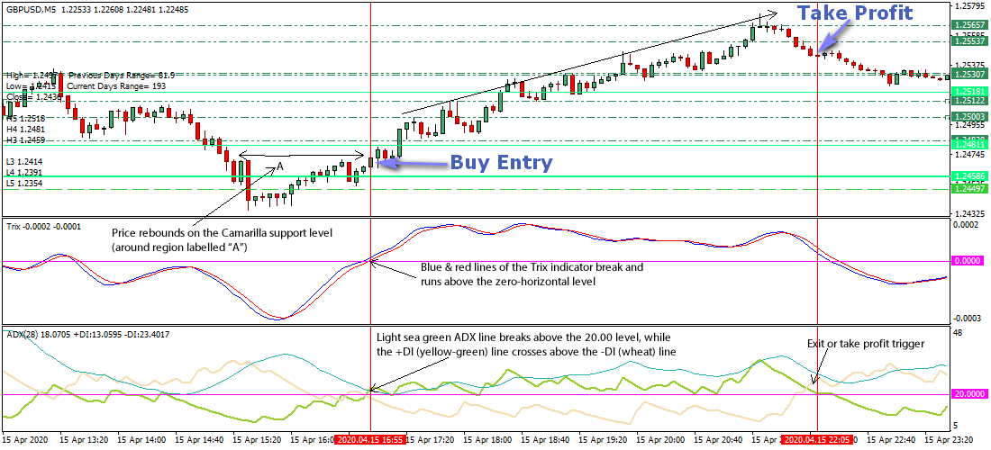 Forex H4 Time Frame Trading with Auto Pivot Plotter System   Forex Online Trading