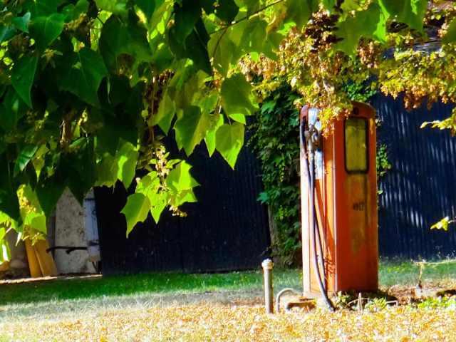 jardin du gite proche sancerre
