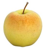 Pomme Ginger Gold