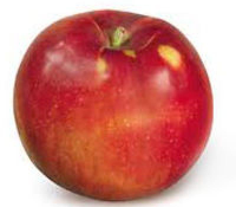 Jonamac Apple