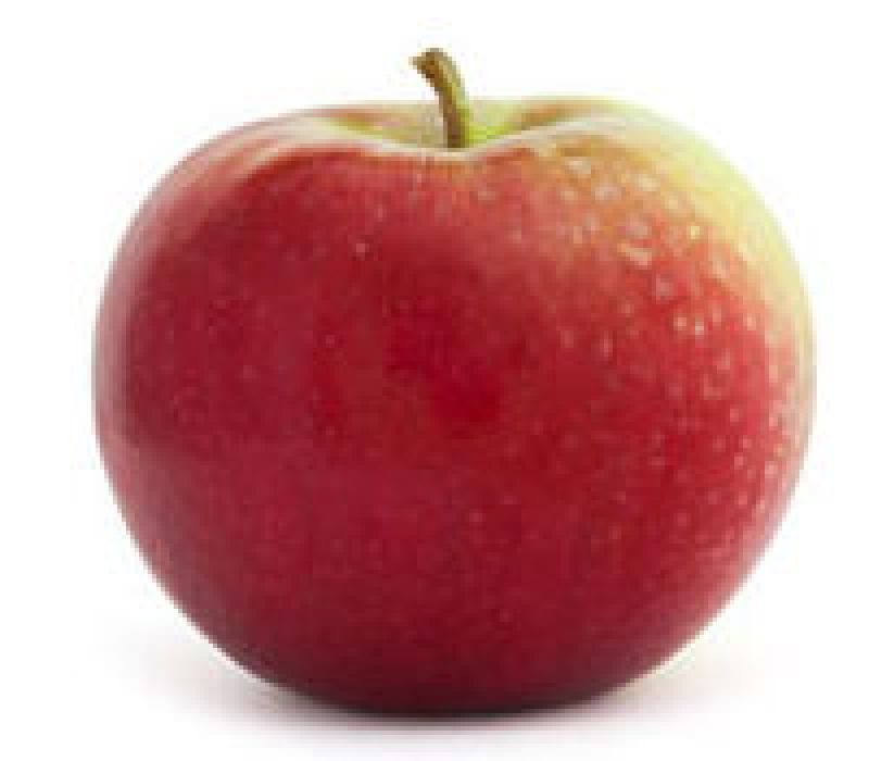 Paula Red Apple