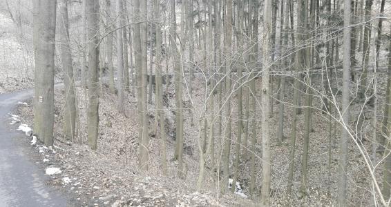příjezd k hradu Frýdštejn