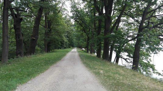cesta na hrazi rybniku Rozmberk