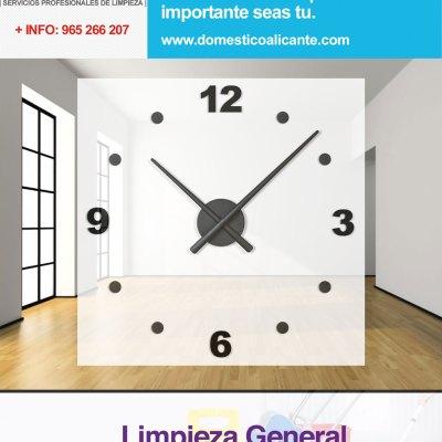 domestico-hora-adicional-limpieza-general Pulido y abrillantado de superficies en Alicante
