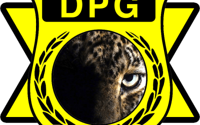 DOMESTIC PROTECTION GROUP