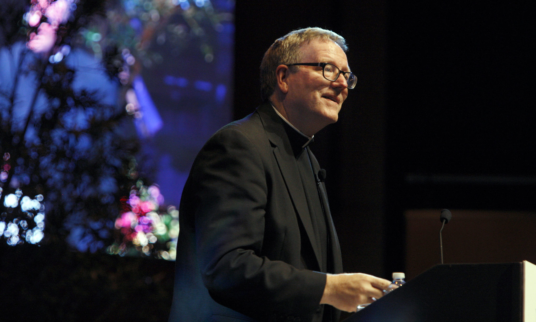 Dominican Foundation, Robert Barron