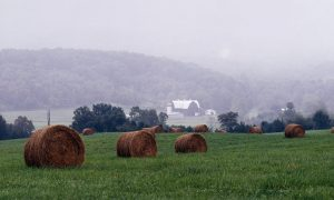 Image: The Shenandoah Valley.