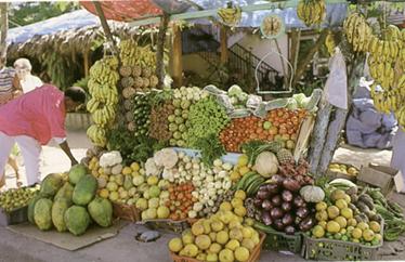 Tradizioni di Santo Domingo