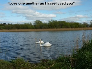 small Love one Another as I have loved you