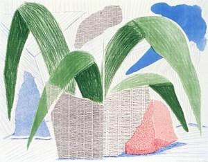 Green Grey & Blue Plant
