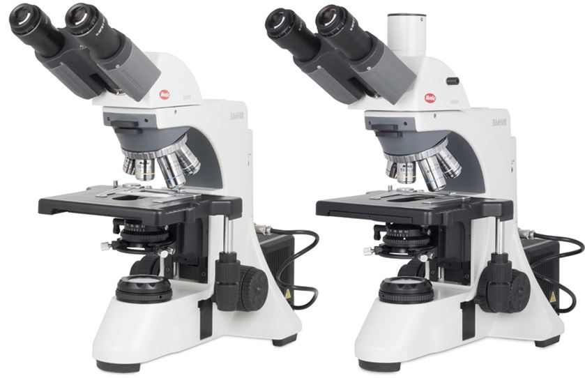 light microscope