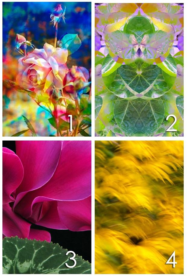 Most Intuitive Art And Painting Program