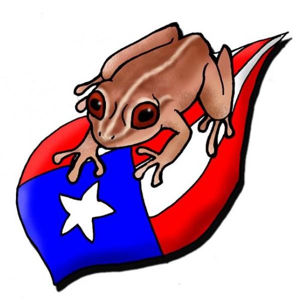 C005 Coqui on PR Flag