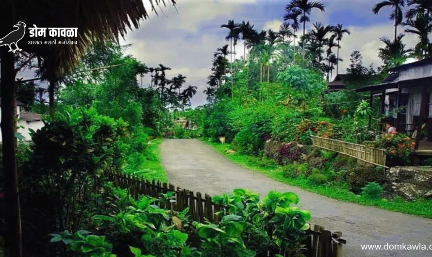 Mawlynnong आशिया खंडातील सर्वात सुंदर आणि स्वच्छ गाव