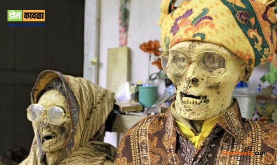 Torajan people इंडोनेशियात दर तीन वर्षांनी  कबरीतुण मृतदेह बाहेर काढला जातो