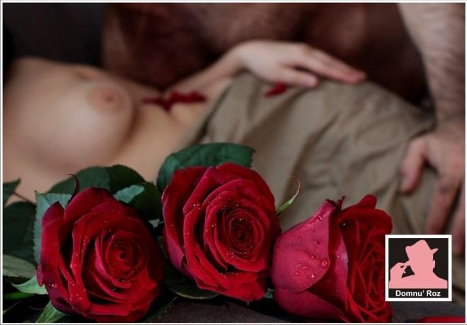 erotica-1881028_960_720