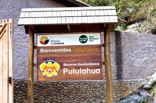 Quito-DomOnTheGo 285