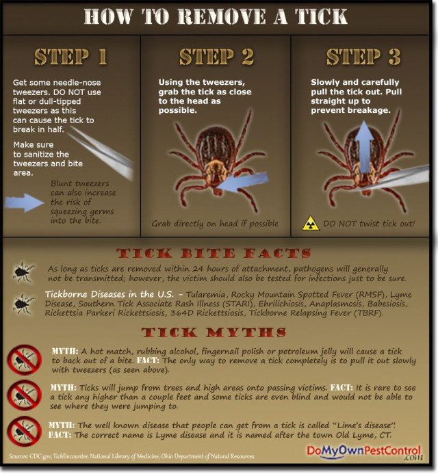 How to Remove a Tick - Tick Removal