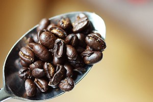 coffee seeds commonly called beans
