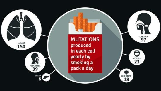 Number of cell mutations due to smoking a pack per day