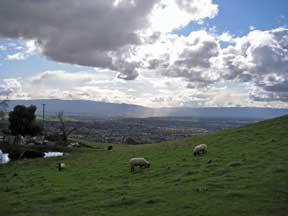 foothillsfeb4.jpg