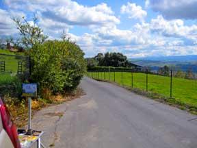 califhills1.jpg
