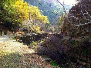 Alum Rock bridge over Penitencia Creek.
