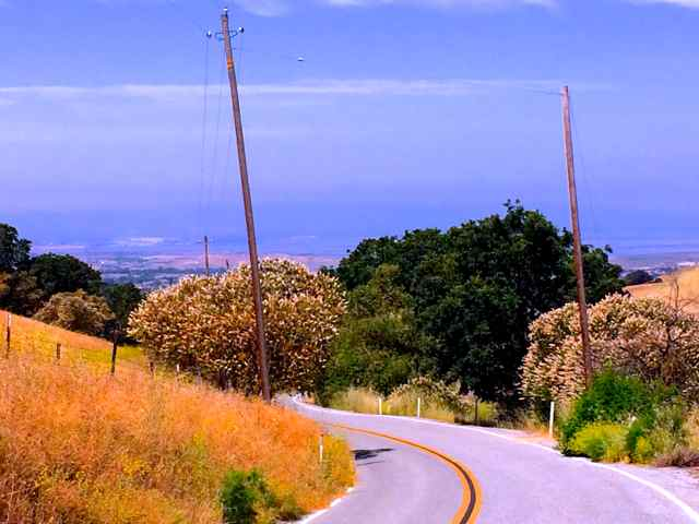 From Old Calaveras Road