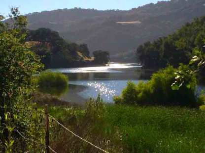 The scene I wanted to paint at Almaden Reservoir.